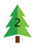 Douglas fir icon - 2